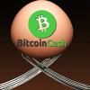 仮想通貨ビットコインキャッシュのハードフォーク、投資をする際の「4つの注意点」