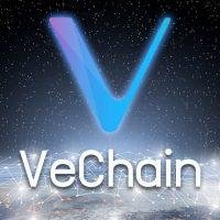 仮想通貨VeChain(VET)、価格高騰の背景は?