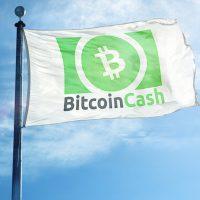 ビットコインキャッシュ(BCH)、5月15日にハードフォーク実施